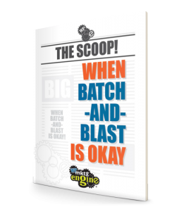 The Scoop! When batch-and-blast is ok ebook
